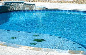 StLouis-inground-pool-49