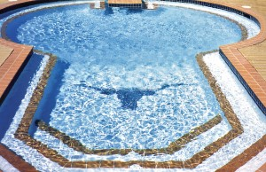 inground pool with Texas longhorn mosaic