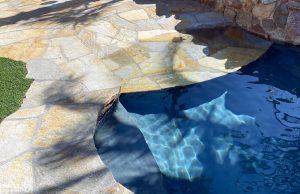 zero-beach-entry-pool-305-bhps