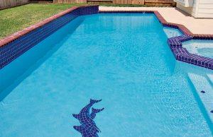 beaumont-inground-pool-10