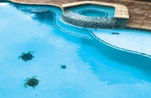 central-alabama-inground-pool-24