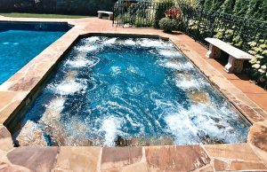 stamford-inground-pool-61