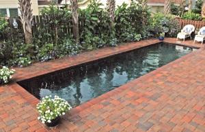 jacksonville-inground-pool-15