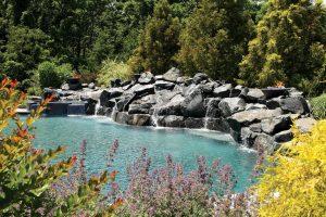 lagoon-inground-pool-370