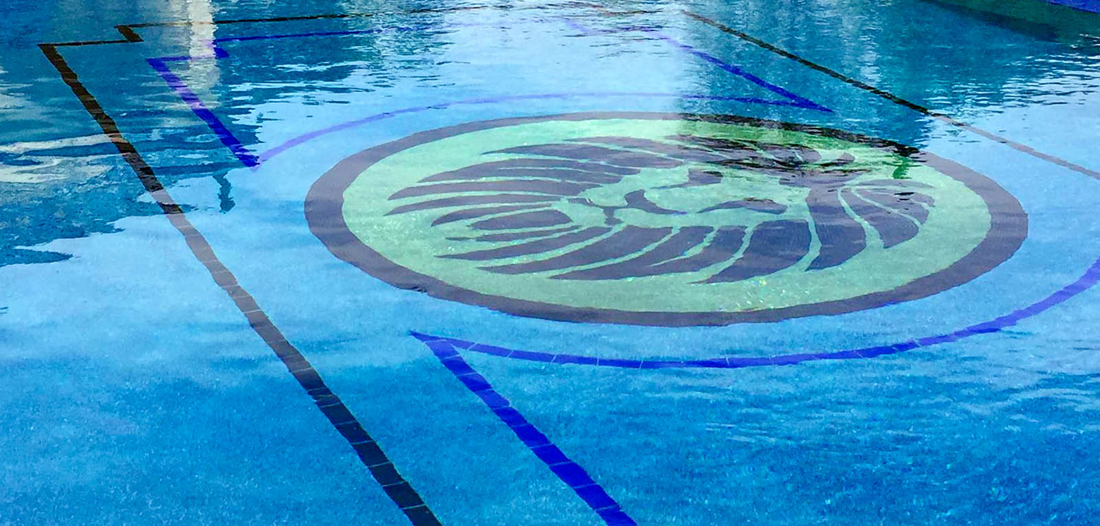 Inground pool with lion mosaic design
