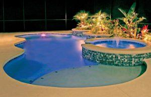 orlando-inground-pool-190