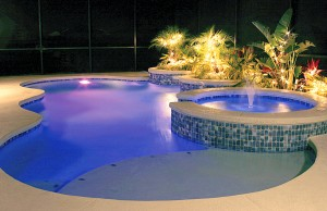 Free form swimming pool with color changing lights and spa
