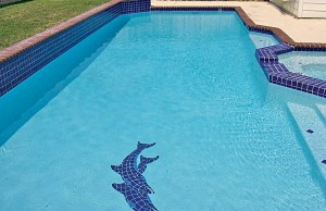 Swimming pool with dolphin mosaic