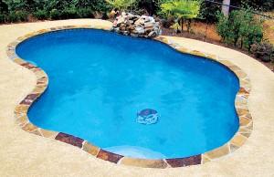 Swimming pool with bulldog mosaic
