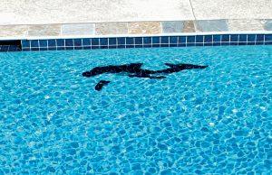 pool-mosaic-160