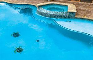 pool-mosaic-190