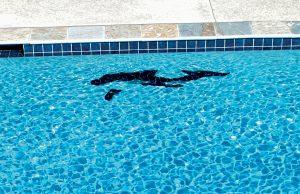 pool_mosaic_bhps_160