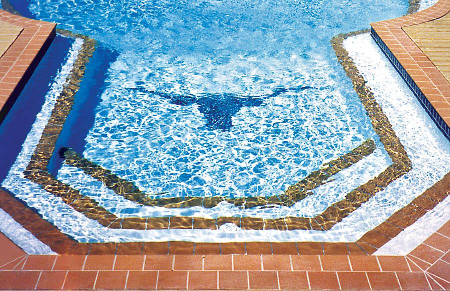 Pool Mosaics Photos   Blue Haven Pools