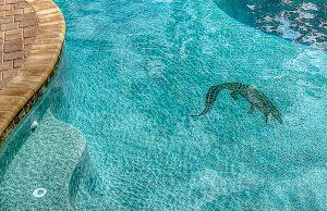 pool_mosaic_bhps_320