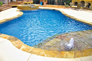 raleigh-inground-pool-07