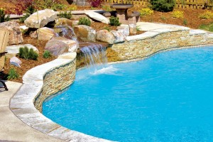 raleigh-inground-pool-w-features-06