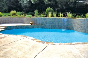 raleigh-inground-pool-w-features-15