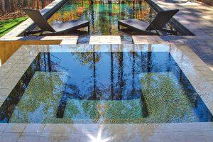 rimflow-spa-on-custom-pool-280D