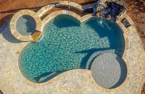 freeform-inground-pools-570