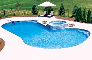 Free form swimming pool with spa and spring board