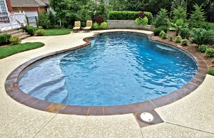 Free form swimming pool by Blue Haven Pools