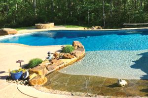 swimming-pool-jumping-rock-310