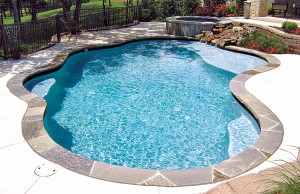 Swimming pool with tanning ledge and rock waterfall