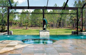 vanishing edge pool with laminar jets and spa