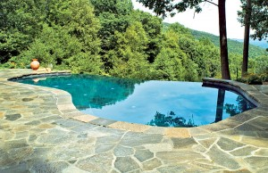 infinity edge pool overlooking forest